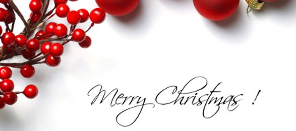 Merry Christmas and a very Prosperous New Year! | VA Pro Magazine